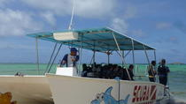 PADI Open Water Scuba Diving 4-Day Course, Punta Cana, Multi-day Tours