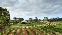 Vasse Felix Margaret River: Winery Tour and Private Wine Tasting, Margaret River, Wine Tasting & ...