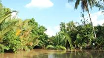 Private Mekong Delta Tour Including Ben Tre, Ho Chi Minh City, Day Trips