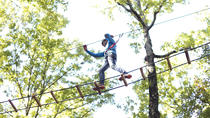 Tree Top Adventure Florence, Florence, Theme Park Tickets & Tours
