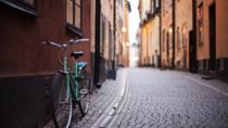 Private 2h Bike Tour: Best of Stockholm City and the National City Park, Stockholm, Bike & Mountain...