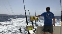 VIP Private Fishing Charter No Limits Two, Tenerife, Fishing Charters & Tours