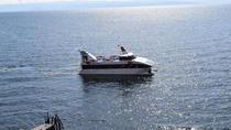 Lake Titicaca Catamaran: Puno to La Paz, Puno, Catamaran Cruises