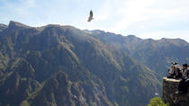 TOUR COLCA CANYON 2D -1N FROM AREQUIPA, ENDING IN PUNO, Arequipa, Cultural Tours