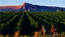 Bike the Colorado Wine Country Self-guided Day Tour, Fort Collins, Wine Tasting & Winery Tours