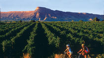 Classic Palisade Wine Country Guided Bike Tour, Denver