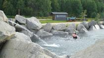 Evening Getaway: Chena Hot Springs Resort, Denali National Park, Air Tours