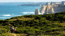 Boutique Great Ocean Road Day Trip from Melbourne with Optional Reserve Seating Upgrade, Melbourne, ...