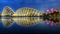 Gardens By The Bay Ticket including One-Way Transfer, Singapore, Private Sightseeing Tours