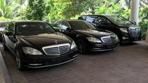 Private Singapore Departure Transfer: City to Airport or Cruise Terminal, Singapore, Airport & ...