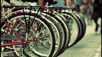 Special Combo: 1day Bike Rental plus Colosseum, Rome, Bike Rentals