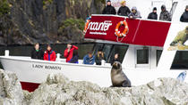 Milford Sound Fly Encounter Cruise and Fly Experience, Queenstown, Nature & Wildlife
