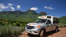 Moorea 4WD Tour Including Belvedere Pineapple Farm and Magic Mountain, Moorea