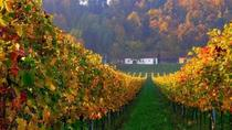 Wine and History Tour to Villany and Pecs from Budapest, Budapest, Private Day Trips