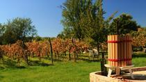 Wine Tour of Etyek from Budapest, Budapest, Wine Tasting & Winery Tours