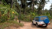 Dominica Shore Excursion: Half Day Jeep Safari, Dominica, null