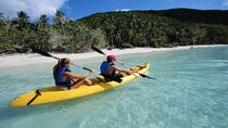 Dominica Shore Excursion: River to Ocean Kayaking Adventure, Dominica, Ports of Call Tours