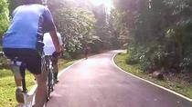 Private Half-Day National Botanic Garden Cycling Tour from Kuala Lumpur, Kuala Lumpur, Day Trips