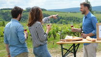 Full-Day North Burgundy and Chablis Wine Tasting Tour from Paris, Paris, Wine Tasting & Winery Tours