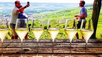Small-Group Tour of Champagne Cellars and Vineyard from Paris, Paris, Day Trips