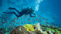 Scuba Diving, Corfu, Scuba Diving