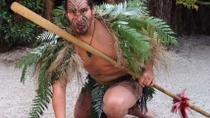 5-Day Bay of Islands, Rotorua, Waitomo Caves and Hobbiton Movie Set Tour from Auckland