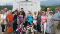 Kelowna and Okanagan Full-Day Wine Tour, Kelowna & Okanagan Valley, Wine Tasting & Winery Tours