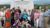 Kelowna and Okanagan Full-Day Wine Tour, Kelowna & Okanagan Valley, Wine Tasting & Winery Tours