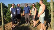 Potpourri Wine Tasting Tour in Stellenbosch, Stellenbosch, Wine Tasting & Winery Tours