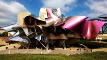 Rioja Alavesa Wineries and Medieval Villages Private Day Trip, San Sebastian, Day Trips