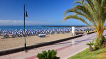 Shore excursion: Self Guided Tour to Playa de las Americas , Tenerife, Ports of Call Tours