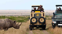 14-Days Kenya and Tanzania Camping Safari from Nairobi, Nairobi, Multi-day Tours