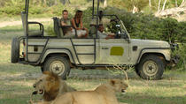 5Days Tanzania Camping Safari to Lake Manyara Serengeti And Ngorongoro Crater from Arusha, Arusha, ...