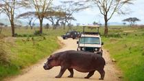6Days Tanzania Northern Circuit Luxury Lodge Safari, Arusha, Multi-day Tours