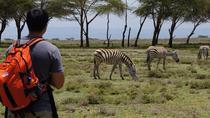 Nairobi Day Trip To Crescent Island Game Conservancy - Lake Naivasha, Nairobi, Private Sightseeing...