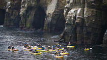 Original Sea Cave Kayak Tour, San Diego, City Tours