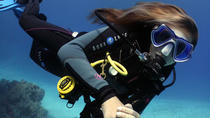 1 Day Dive Pack for Certified Divers in Sharm el Sheikh, Sharm el Sheikh, Scuba Diving