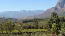 Private Full-Day Winelands Tour from Cape Town, Cape Town, Private Sightseeing Tours