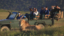 Private Garden Route Tour und Big Five Safari - 2 Tage, Cape Town, Private Sightseeing Tours