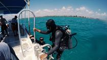 Discover Scuba Diving All-Inclusive Reef Tour