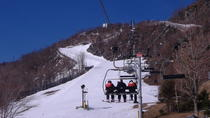 Catskill Mountains Ski and Snowboard Day Trip, New York, Day Trips