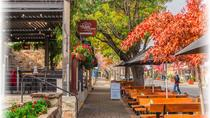 Adelaide City Highlights with Hahndorf and Mt. Lofty, Adelaide, Day Trips