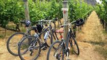 Half-Day Self-Guided Ride and Wine Bike Tour from Arrowtown, South Island, Bike & Mountain Bike ...