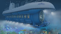 Atlantis Submarines Night Tour, Barbados, Night Tours