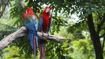 General Admission to Wild Life Park in Punta Cana, Punta Cana