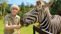 Australia Zoo by Croc Express Coach, Brisbane, Theme Park Tickets & Tours