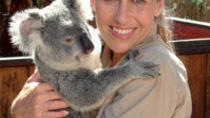Australia Zoo by Croc Express Coach