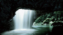 Glow Worm Cave and Natural Bridge Tour from Gold Coast, Gold Coast, null