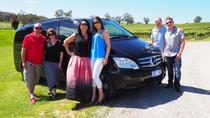 Private Barossa Valley Cellar Secrets Experience from Adelaide, Glenelg or Barossa Valley