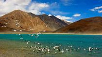 9 Nights 10 Days Experience the adventure and life Full of Journeys at Leh and Ladakh, Leh, 4WD, ...